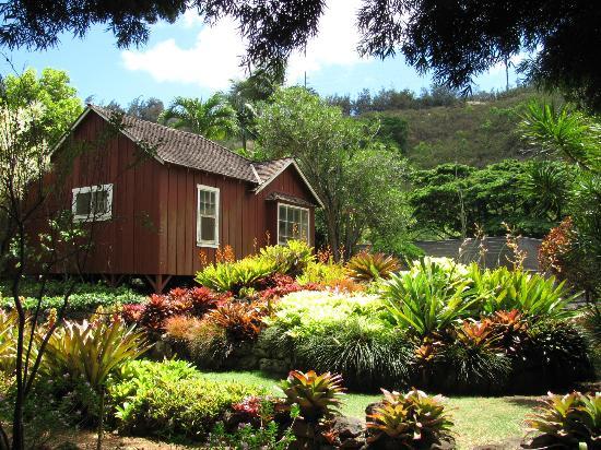 Wailua Bay View Condominiums: Tour of Allerton Gardens, South Kauai