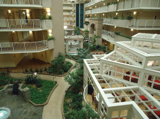 Embassy Suites by Hilton Atlanta - Airport: view from my door