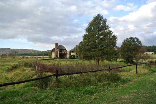 Ardmore Guest Farm: View of the farm
