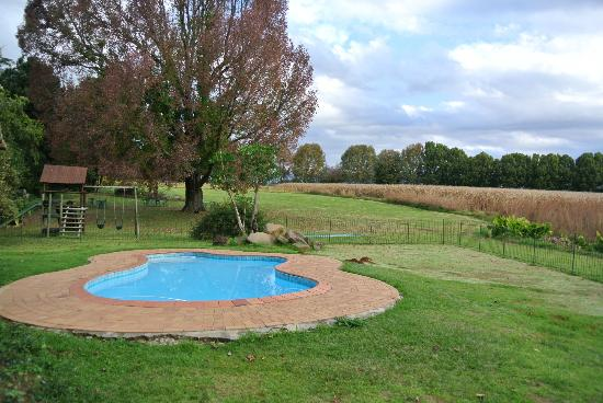 Ardmore Guest Farm: Pool area