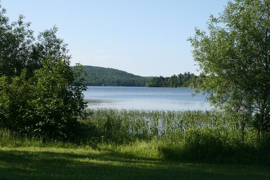 Pinewood Inn: lake Kamaniskeg may be viewed from back of motel