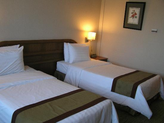 The Centrepoint Hotel: Two single beds