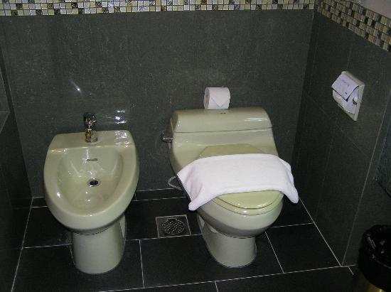 The Centrepoint Hotel: WC and Bidet