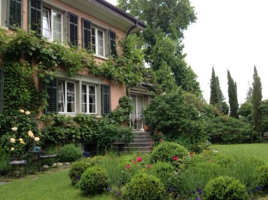 B&B Villa Magnolia: Garden