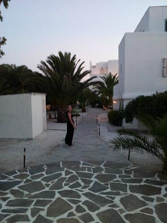 Medusa Resort : Jardin