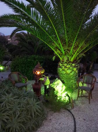 Medusa Resort : Jardin du Medusa