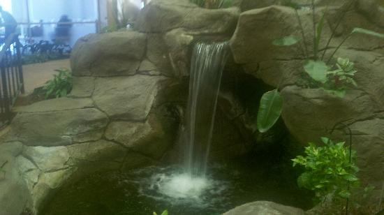 Embassy Suites by Hilton Memphis: Waterfall in hotel