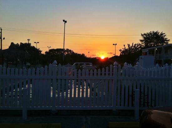 Americas Best Value Inn-Bradenton/Sarasota : The pool at sunset.