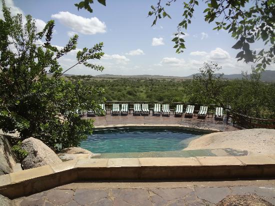 Seronera Wildlife Lodge : la piscine avec vue sur le Serengeti
