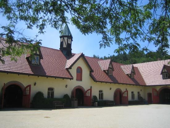 Anheuser-Busch Brewery Tours: Stables
