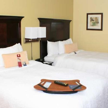 Hampton Inn Central Naples: Guest Room