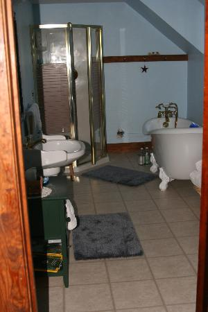 Sandtown Farmhouse Bed and Breakfast: Stars & stripes bath