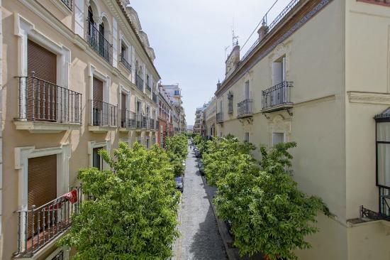 Hotel madrid de sevilla updated 2018 reviews price for Hotel calle sevilla madrid