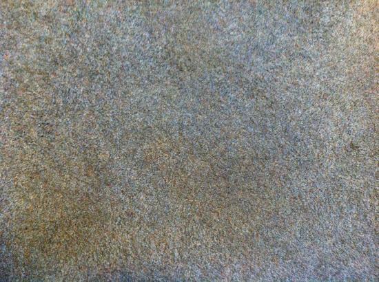 Yosemite Peregrine Lodging: Stained carpet