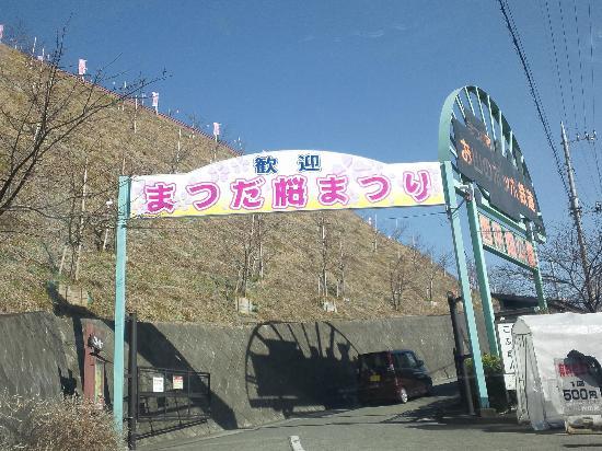 Hoteles en Matsuda-machi