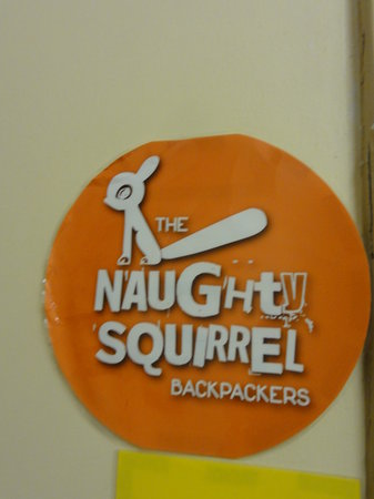 Naughty Squirrel Backpackers: Hostel Logo