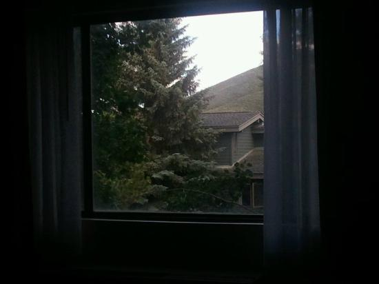 Comfort Inn Near Vail Beaver Creek: View from our room - felt like we were in a treehouse!