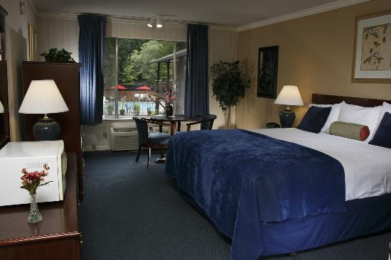 Occidental Hotel: King Deluxe Room