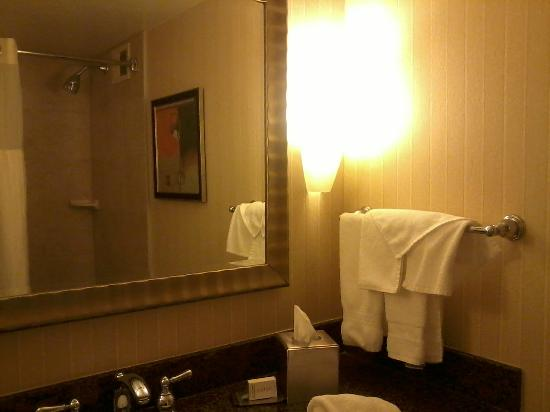 DoubleTree by Hilton Hotel Syracuse: Bathroom