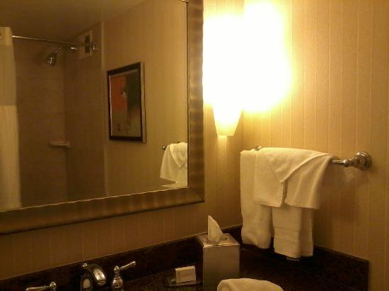 錫拉庫紮希爾頓逸林飯店照片