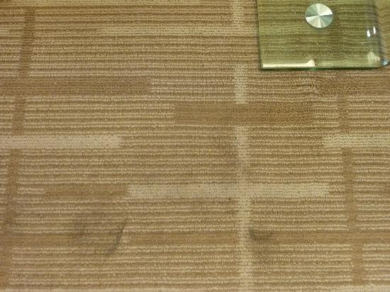 New Beacon New Times International Hotel: Carpet stains
