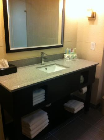 Holiday Inn Express & Suites Havelock: nice modern bath
