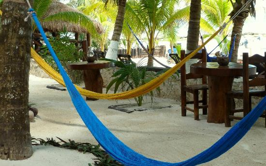 Beachfront La Palapa Hotel Adult Oriented: Courtyard