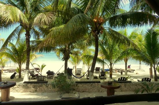 La Palapa: View from our balcony