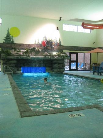 Stoney Creek Hotel & Conference Center - Sioux City: Pool
