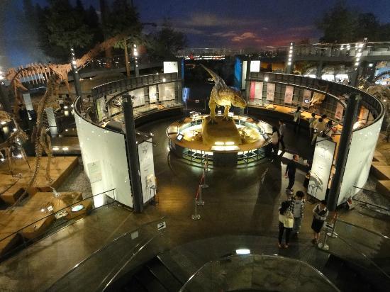 Katsuyama, Ιαπωνία: 博物館内部全景