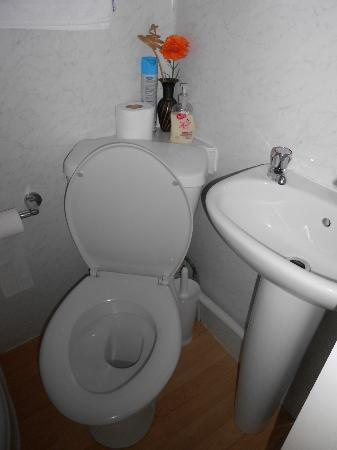 Gwynant Guest House: Toilet and sink..