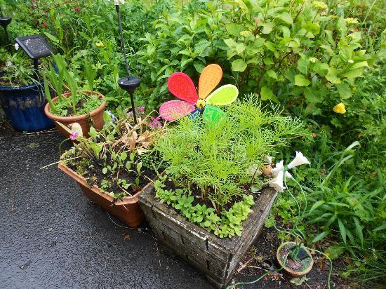 Gwynant Guest House : Garden Orderments