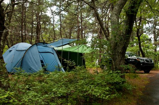 Dunes' Edge Campground: Camp site