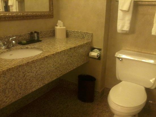 Embassy Suites by Hilton Syracuse: Sink