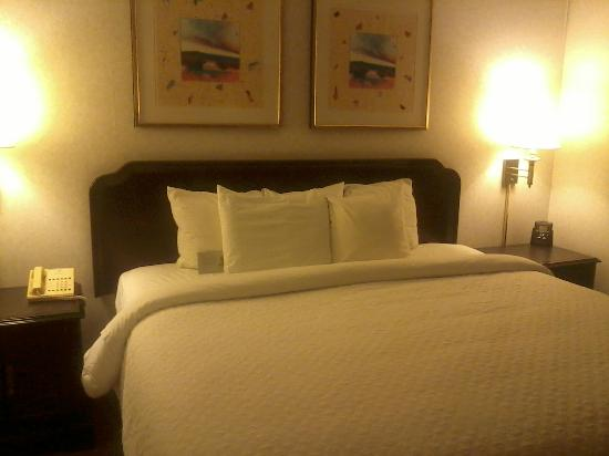 Embassy Suites by Hilton Syracuse: Bed