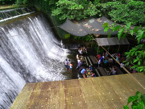 Villa Escudero Resort: Our lunch was served at the base of the waterfall