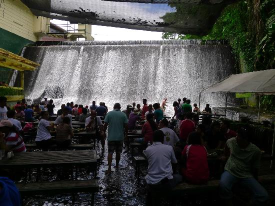 Lunch at the falls picture of villa escudero resort san Villa escudero room pictures