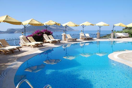 Villa Hotel Tamara: The salt water pool