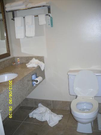 Econo Lodge Darien Lakes: Bathroom