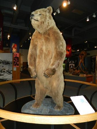 1st Alaska Outdoor School : The Welcoming Committee at the Museum of the North