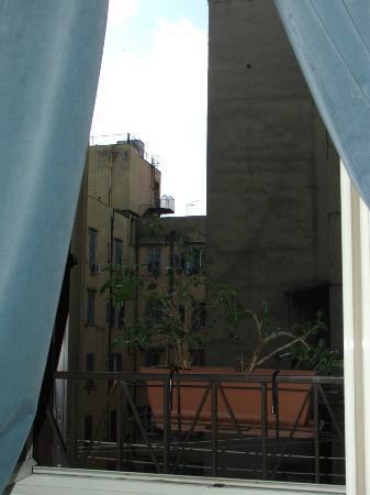 เอมี่ส์เฮ้าส์: view from my room.