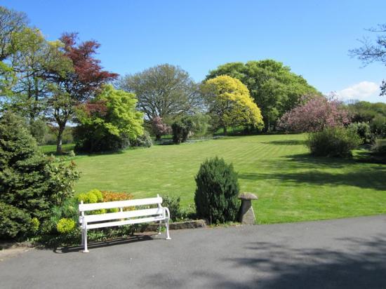 Plas Dinas Country House: The grounds