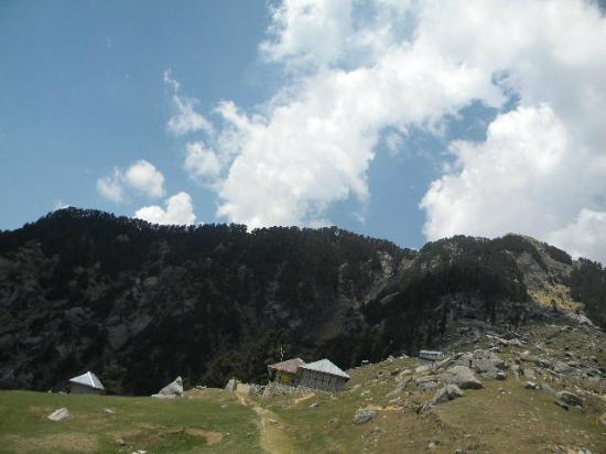 Triund Hill: Under the Dhelodhars