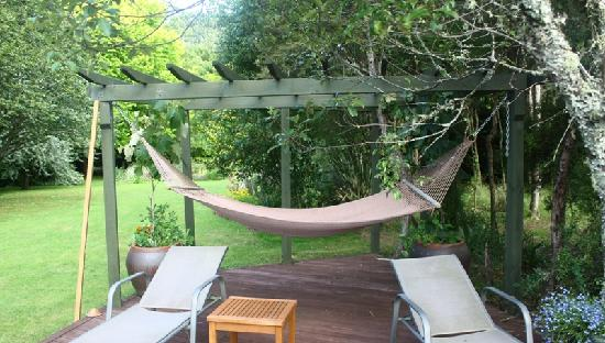Aultmore Hollow: Relaxing area hammock and chair