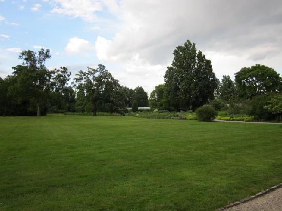 Eilenriede: grüne Parkanlage