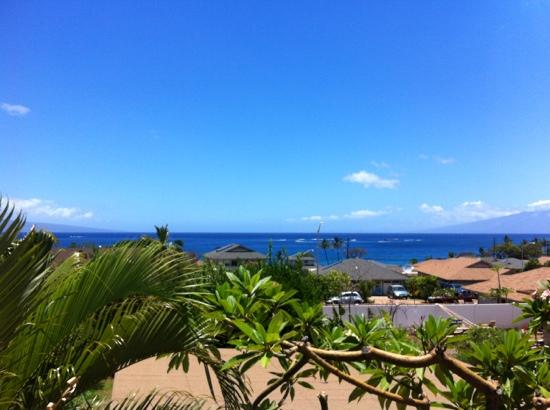 Garden Gate Inn: View from the room's lanai