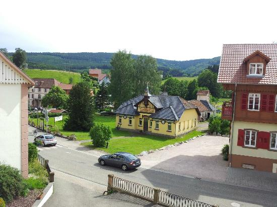 Le Grand Hotel Du Hohwald : Fantastic view from room