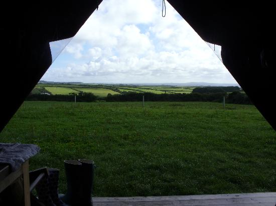 Feather Down Farms at Boswarthen Farm: View from the tent to the South