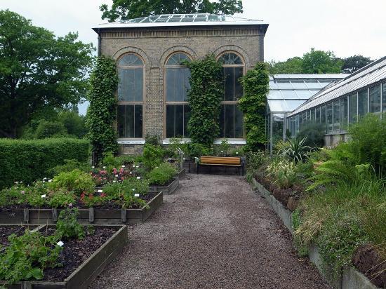 Botanical Gardens (Botaniska Tradgarden): botanical garden outside