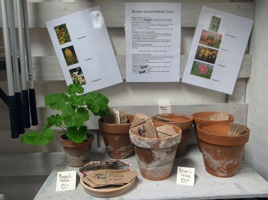 Botanical Gardens (Botaniska Tradgarden): shop